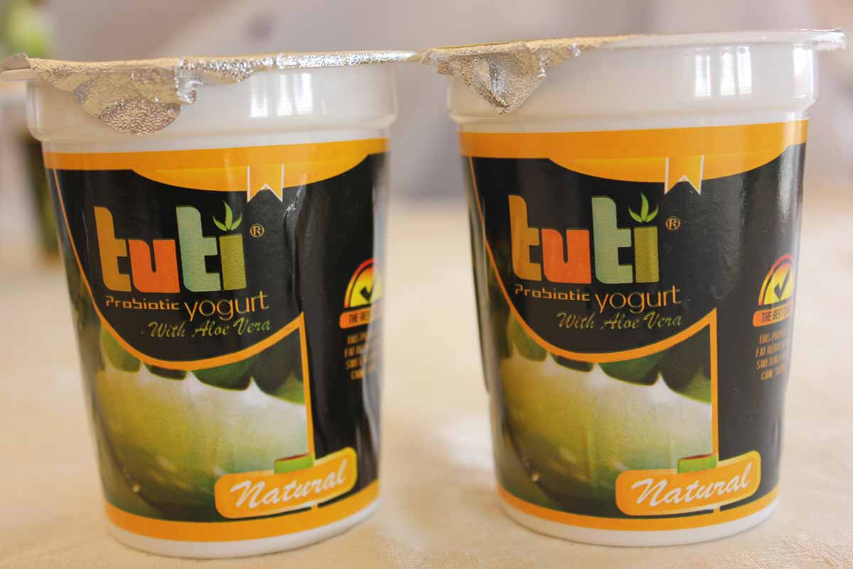 tuti-yogurt-choice-health-network